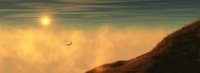 оранжевые, небо, горы, птица,