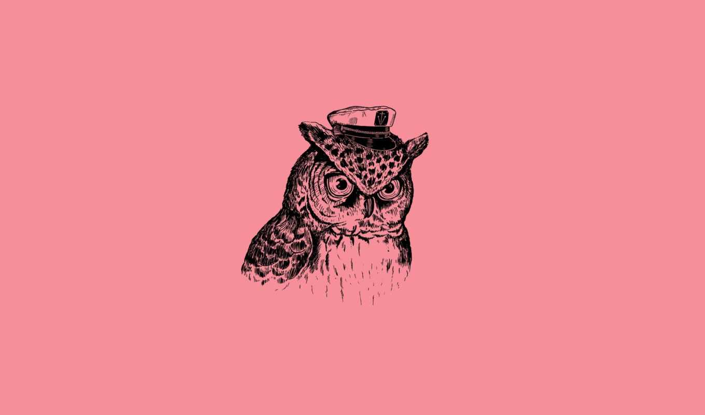 minimalizm, captain owl, owl