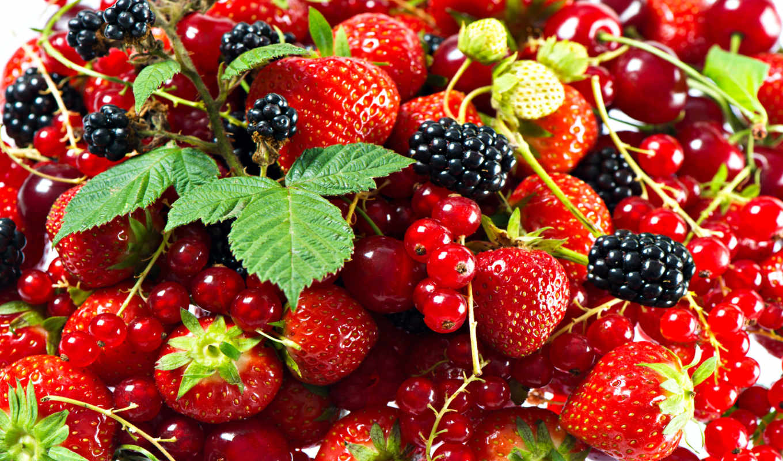 смородина, красная, клубника, blackberry, ягоды,