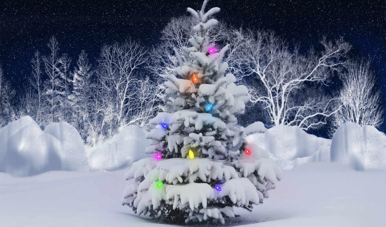 год, новый, зима, снег, елка, лес,