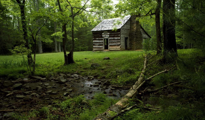 домик, лес, зелень, романтично, nature, смотрите, ручей, сайта, desktop,