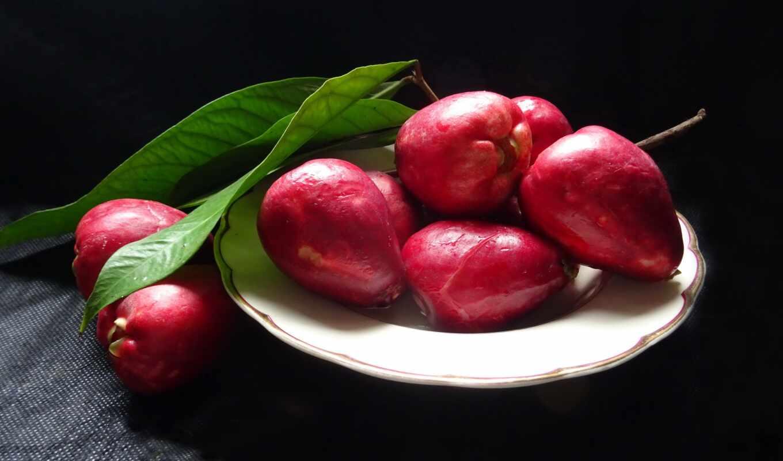 плод, apple, meal, еда, малайский, wallpapermaniac