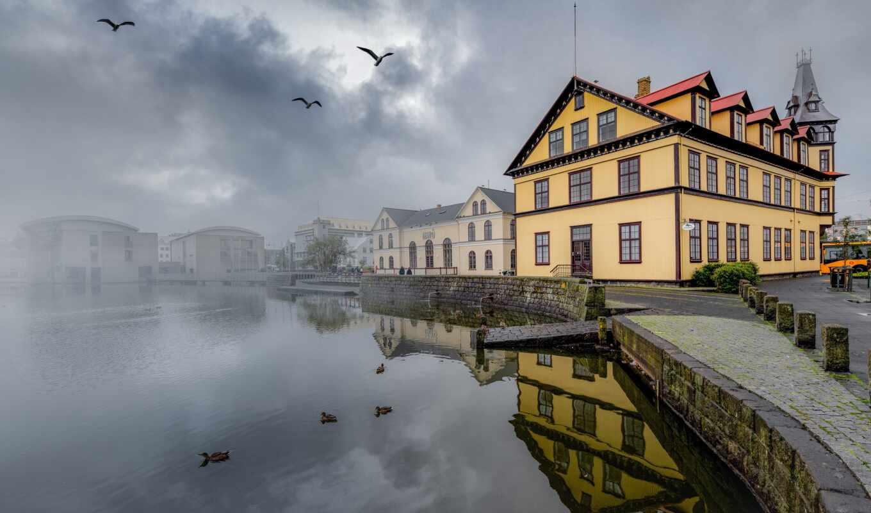 house, iceland, берег, туман, rnin, фото, птица, озеро