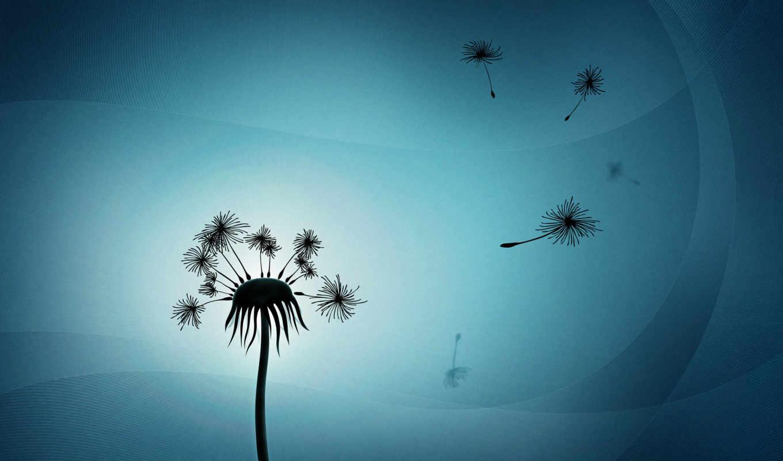 одуванчик, минимализм, пух, dandelion, свет, мечты, разлетевшиеся, wallpaper, картинка, and,