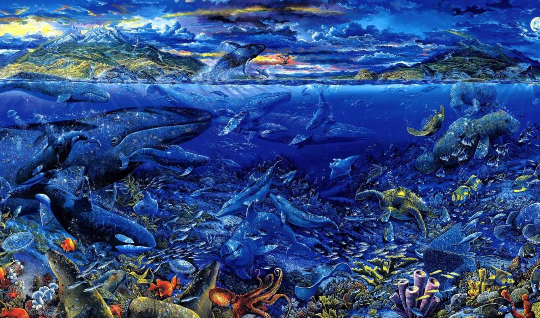 касатки, черепахи, киты, осьминоги, глубины, моркие, арт, тюлени, дельфины, рыбы,
