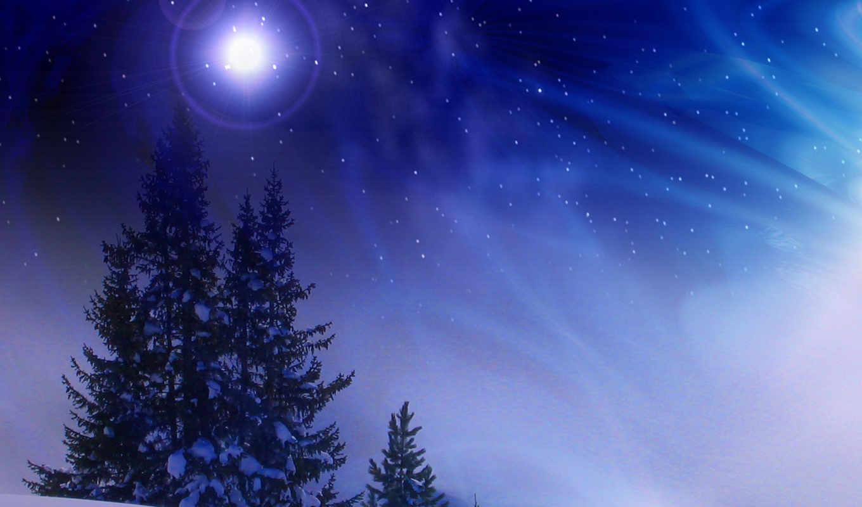 ночь, снег, деревья, free, iphone, winter, desktop,