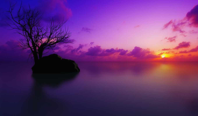 закат, purple, you,