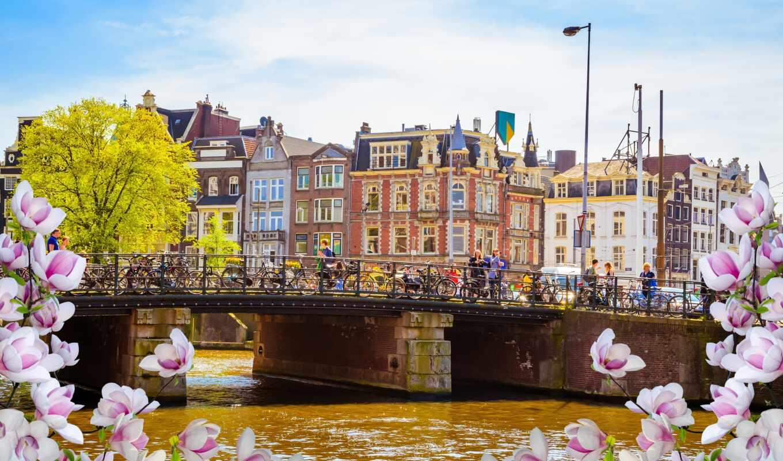 мост, amsterdam, река, нидерланды, цветы, veneza, carnaval, allard, весна