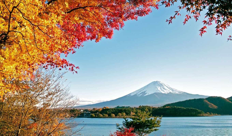 фудзияма, осень, деревя, горы, озеро, природа, картинка,