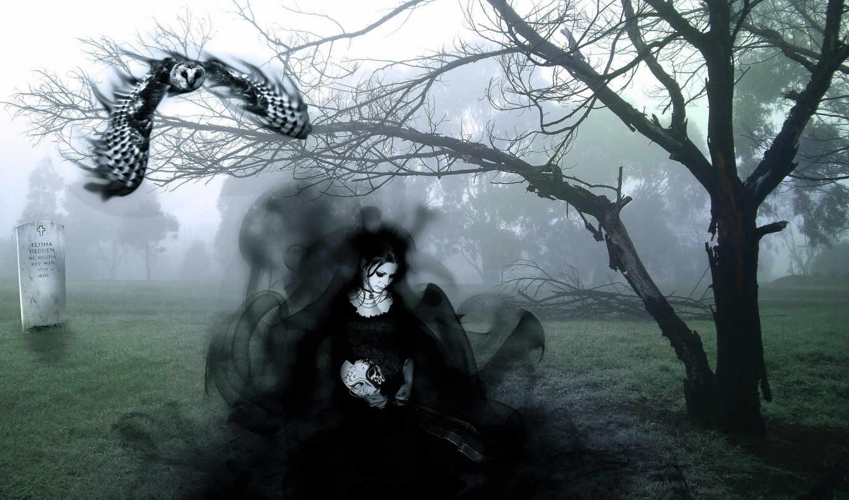 фея, кладбище, robot, phoenix, змеи, существо, зомби, замок, доспех, самурай, корабль,