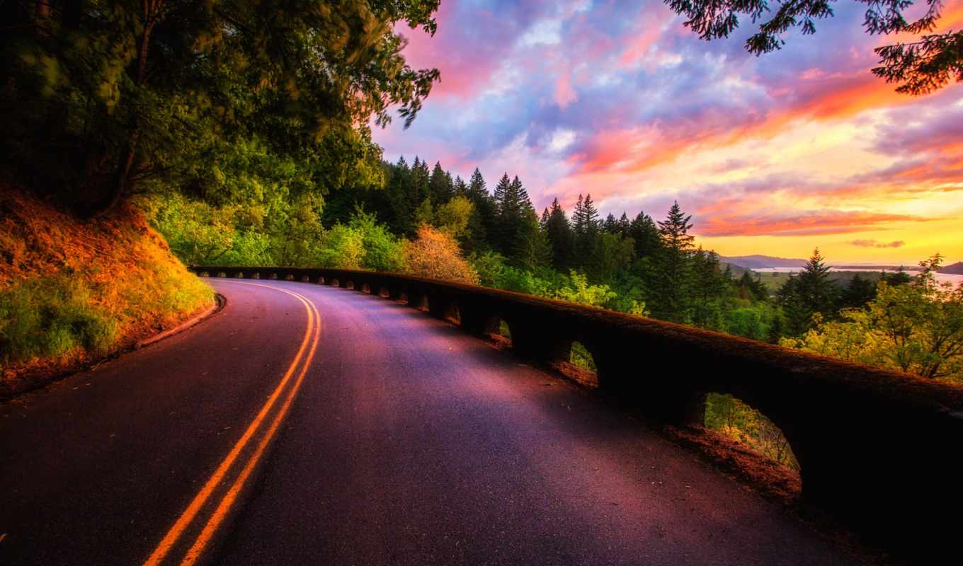 forest, trees, view, nature, sunset, colors, road, sky, clouds, картинка, картинку,