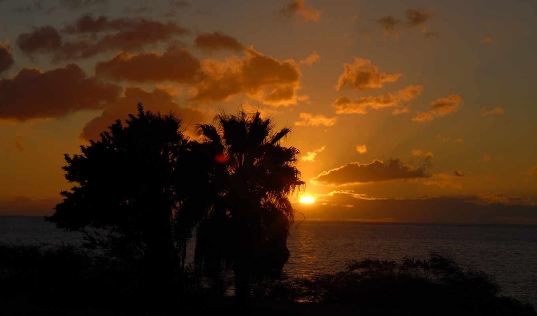 sunset, wallpapers, природа, palms, behind, закат, изображение, palmen, wallpaper, hinter, sonnenuntergang, картинок, изображения, picsfab, фабрика,