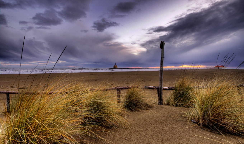 desert, grass, una, las, beach, дек, hinh, con, sand,