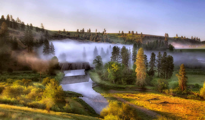 туман, река, рассвет, природа, trees, утро, холмы,