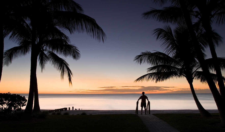 силуэт, пальмы, человек, горизонт, пейзаж, wallpapers, silhouette, wallpaper, hd, ipad,