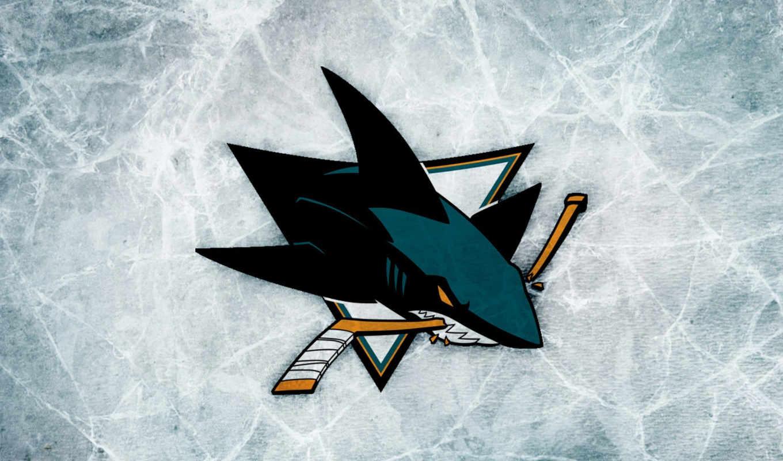 san, хосе, sharks, нхл, usa, club, хоккеист,