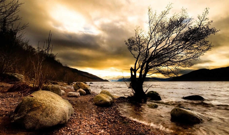 природа, река, darkness, скалы, дерево, desktop, лес, браун,