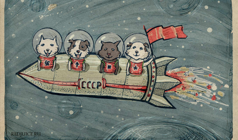 космос, strelka, cosmos, белки, стрелок, белка, dogs, собаки, soviet, хаски,