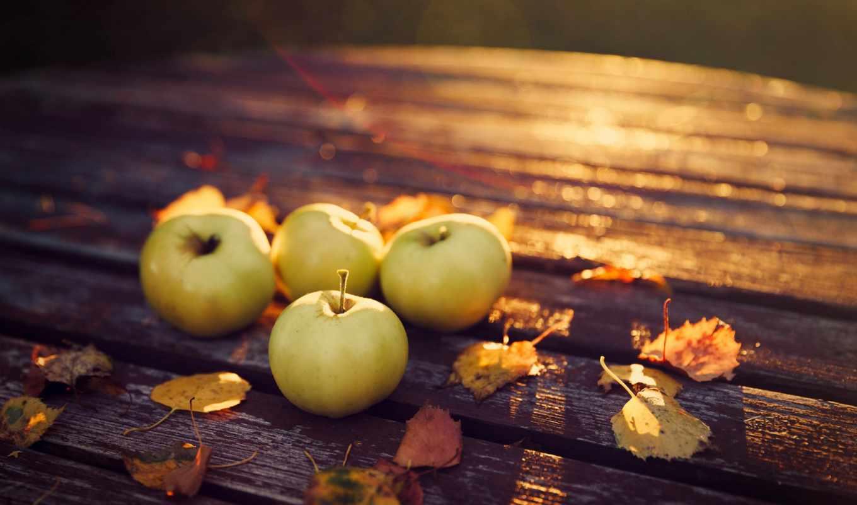 яблоки, осень, урожай, листья, картинка, картинку,