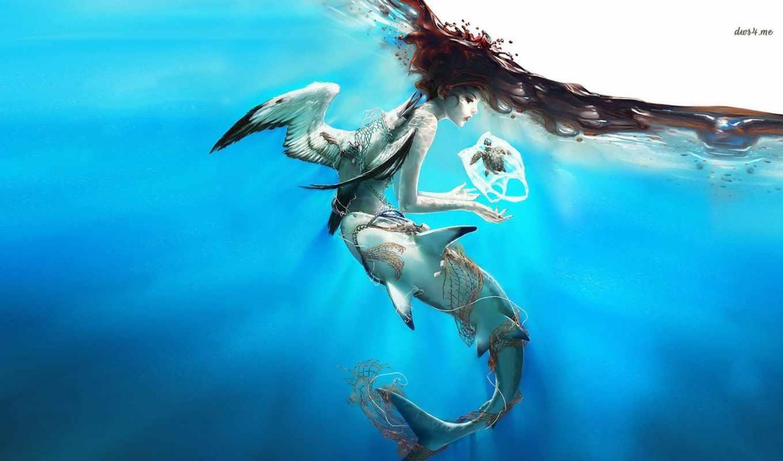 акула, русалка, черепаха, птица, desktop, free,