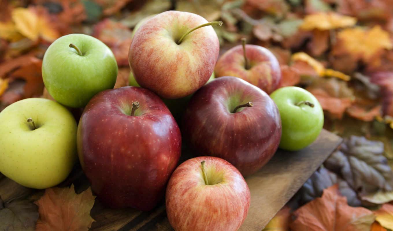 яблоки, осень,