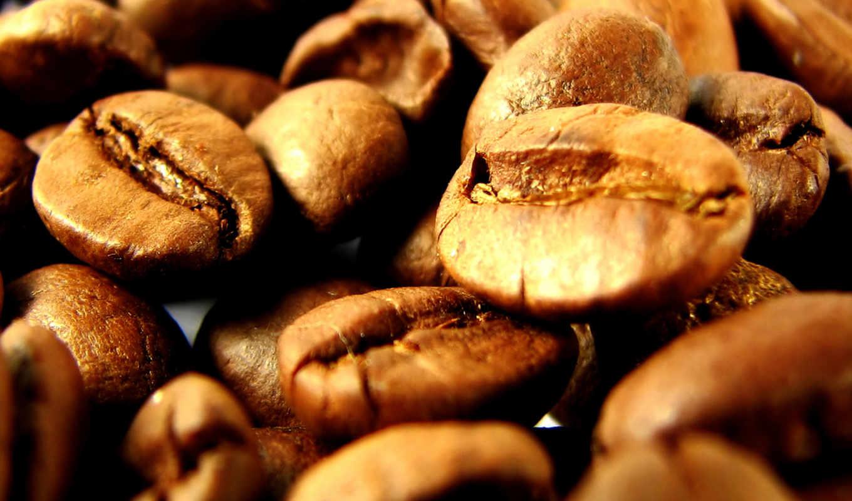 кофейные, кофе, зерна, зерновые, сборник, просмотров, смотрите, сочный, mix,