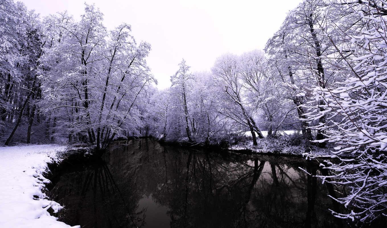 озеро, зимой, тёмное, снег, winter, деревья, ветки, небо,