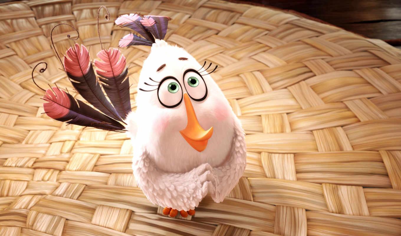 birds, angry, кинотеатр, рамочка, сниматься,