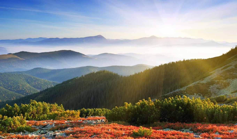 рассвет, утро, sun, природа, туман, широкоформатные, rays, горы, лес,