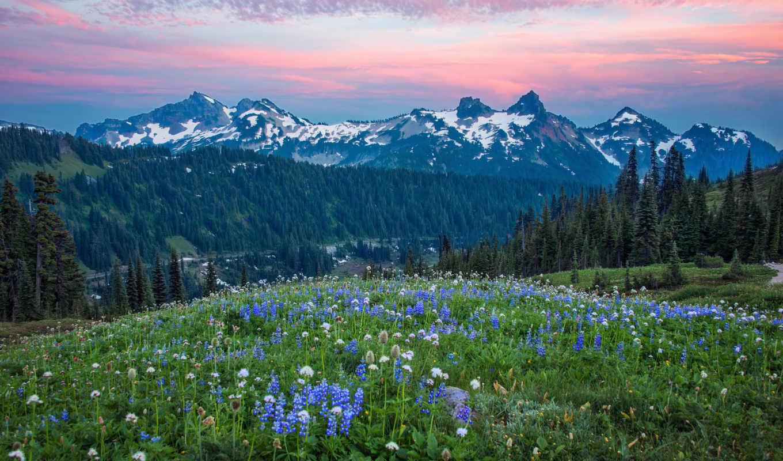 горы, range, landscape, фотообои, природа, фотопанно, tatoosh, washington, озеро,