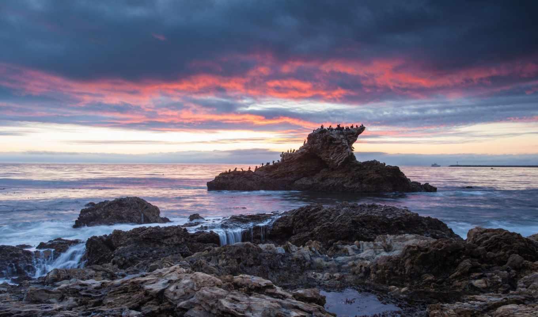 океан, берег, птицы, камни, море, скала, закат, вечер, картинка,