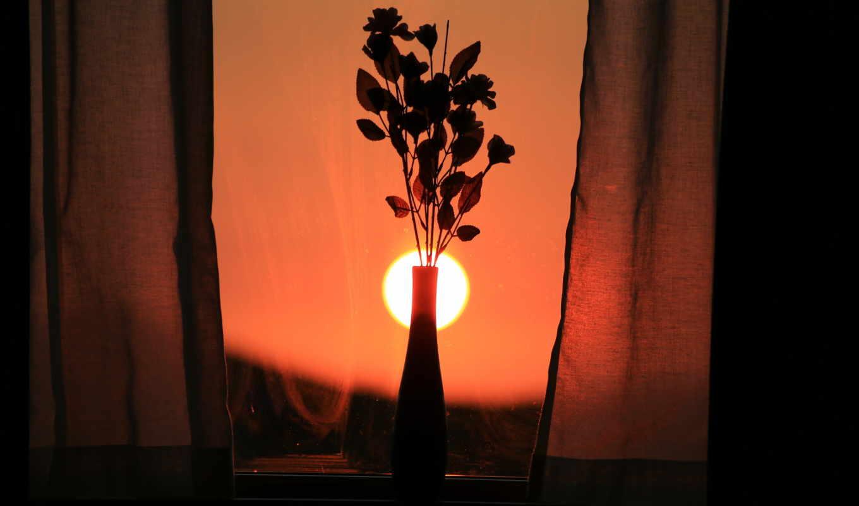 cvety, desktop, окно,