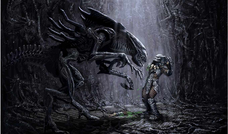 alien, predator, vs, queen, wallpaper, free, share