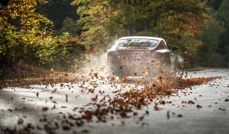 bentley, supercars, машины, скорость, машина, осень,