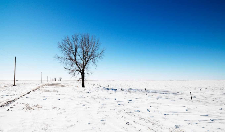 winter, снег, дерево, дорога, небо, природа, деревья,