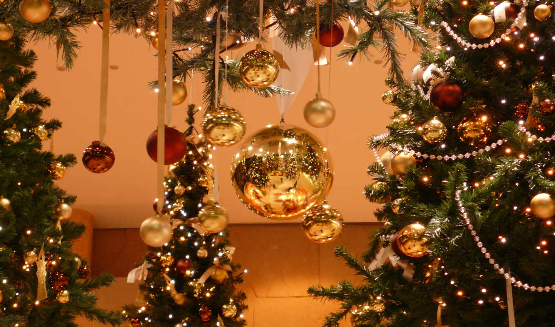 новогодняя, елки, новогодние, дек, дерево, christmas, комментарии, просмотров,
