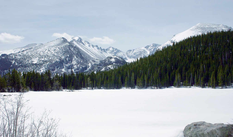 снег, горы, лес, снежные, вершины,