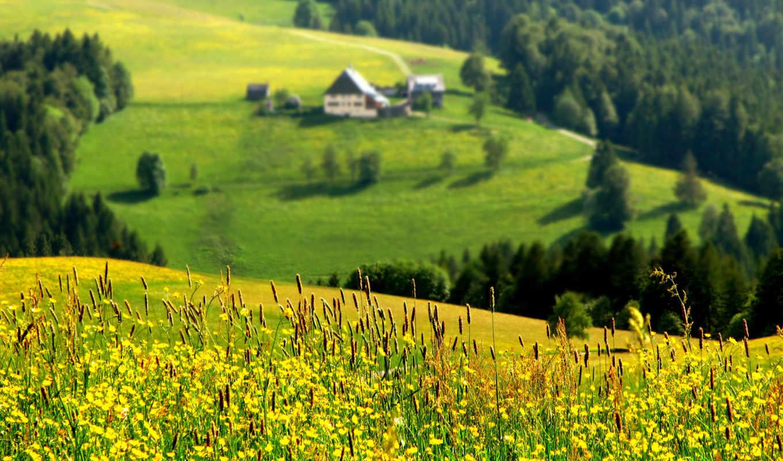 природы, природа, красивая, красивые,