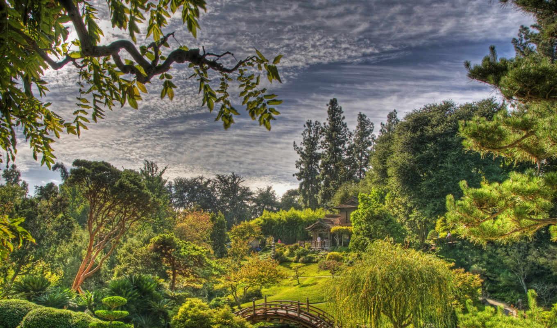 сады, природа, marino, san, usa, калифорния, botanical,