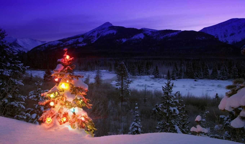 новый, год, природа, зима, игрушки, горы, елка, деревья, снег, вечер, сумерки, картинка, christmas,