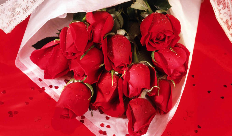 cvety, розы, красные, букет,