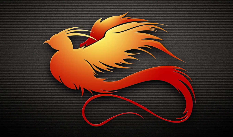 dark, птица, оранжевый, profile, phoenix, тендерах,