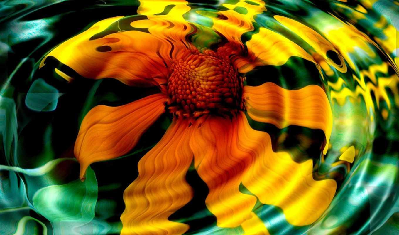яркие, шикарнейшие, природы, яркий, отражение, янв,