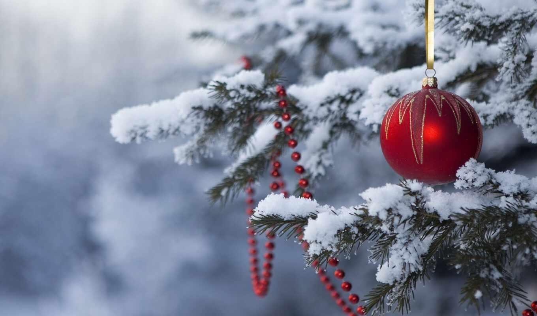 новый, год, елке, новогодние, живой, игрушка, новогодняя, елка, праздник, снег, happy, игрушки,