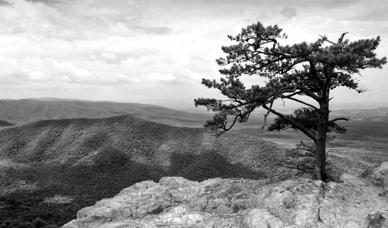 black, white, mountains, download, desktop, photos, full, background, чёрно, view, apple, amazing,