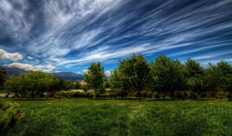 trees, небо, природа, landscape, oblaka, трава, зелёный, фоны, категории,
