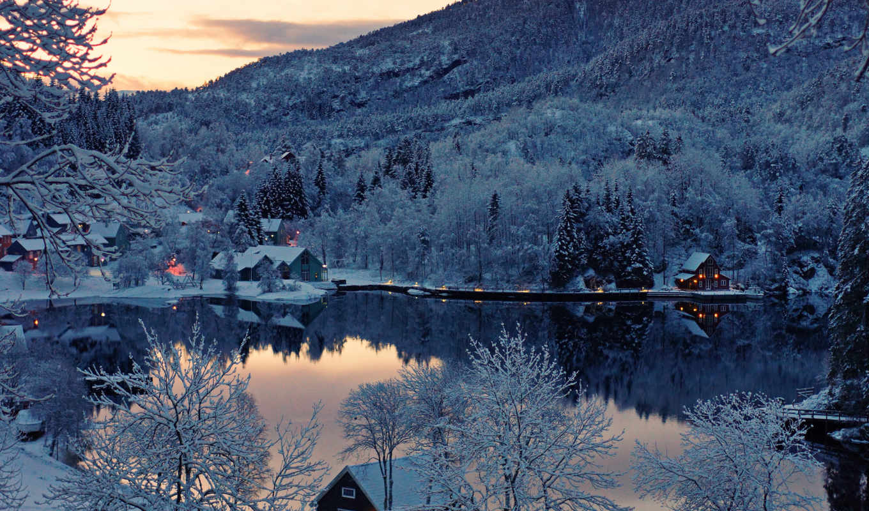 winter, likes, trees,