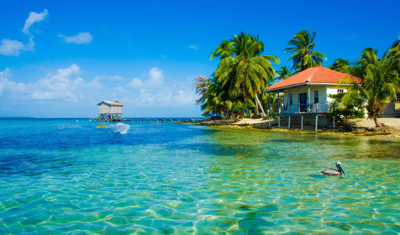 море, пляж, тропики, palms, мост,