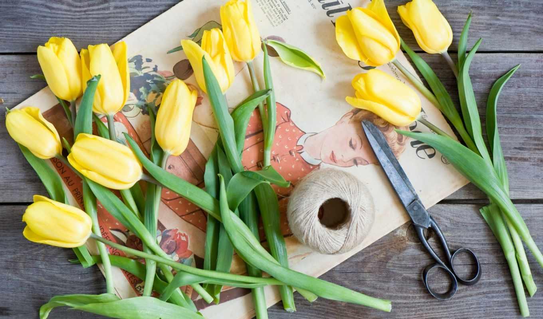 марта, цветы, profile, тюльпаны,