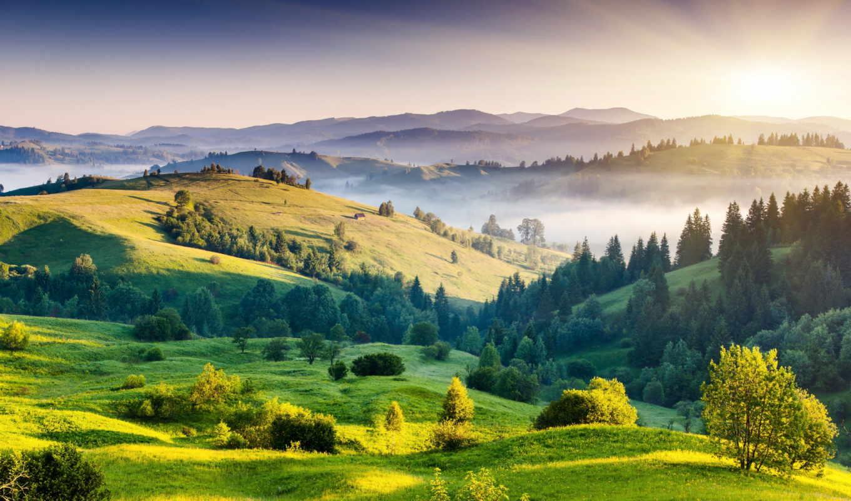 рассвет, небо, взгляд, landscape, трава, поле, красиво, свет,